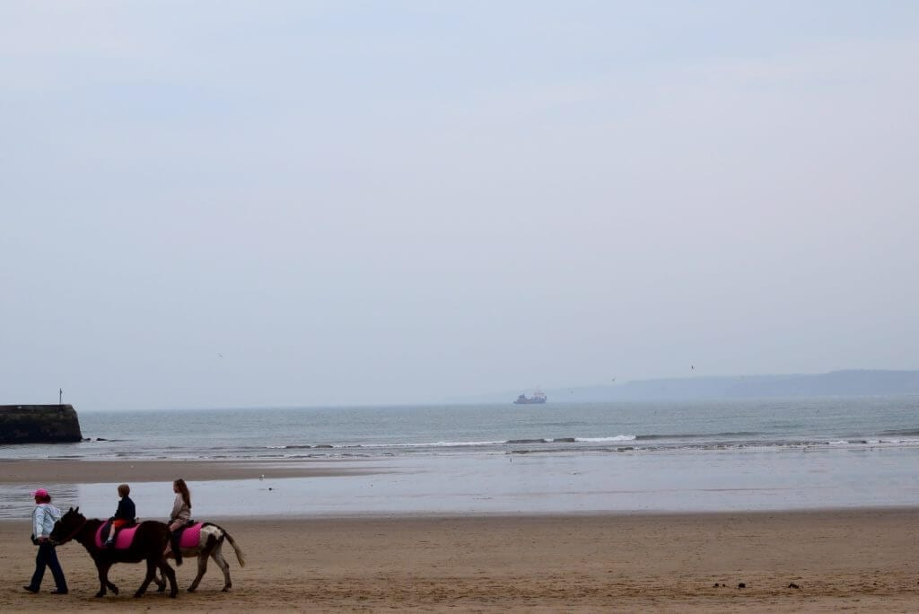 donkey rides in scarborough